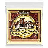 Ernie Ball Earthwood 5-string Banjo 80/20 Bronze Loop End Frailing Set, .010 - .024