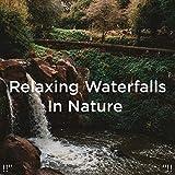 Musique Nature Pour Dormir