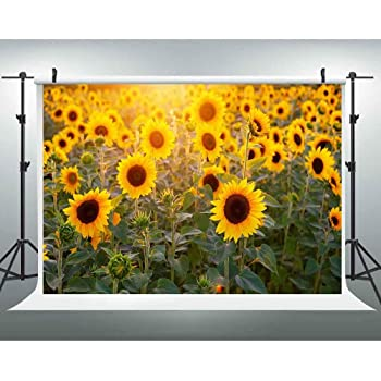 New210x150cm Photography Background Vinyl Sunflower Long Lasting Durability Photo Studio Background Wall Covering Photo Studio Vinyl Photo Studio Background for Party