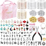 300Pcs Bangle Bracelets Making Kit, Thrilez Charm Bracelet Making Kit with Expandable Bangles, Charms, Jump Rings and Pliers for Jewelry Making Bangle Bracelets (with Gift Box and Tools)