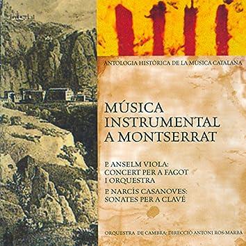 Música Instrumental a Montserrat