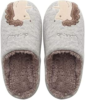 Ladies Shoes Winter Home Slippers Cartoon Cute Soft Winter Warm House Slippers Indoor Outdoor Couple Hyococ (Color : Gray 1, Size : 10.5)