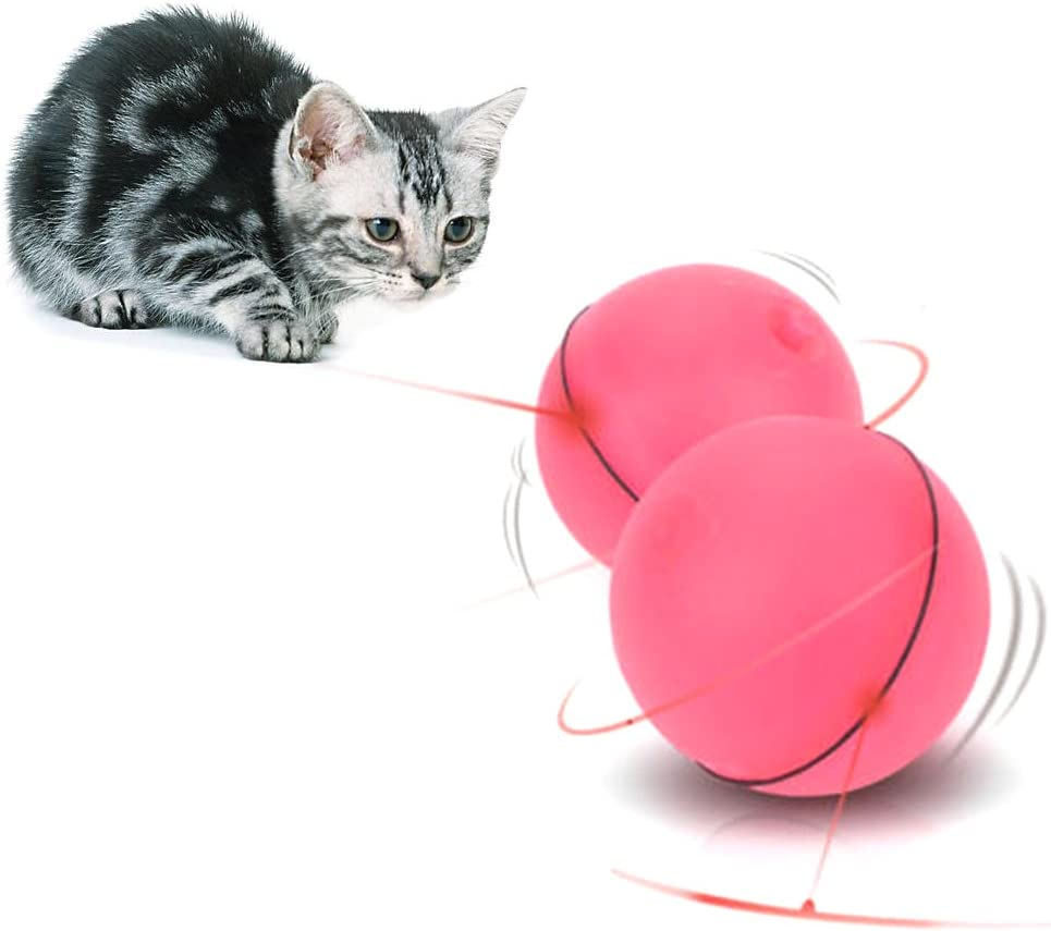 Amazon.com : Misright Funny Pet Dog Cat LED Light Magic Ball Teaser  Exercise Interactive Automatic Toy (Red) : Pet Supplies