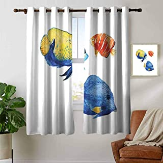 petpany Modern Farmhouse Country Curtains Fish,Tropical Aquarium Life Discus Fish and Goldfish in Different Patterns,Azure Blue Yellow Scarlet,Design Drapes 2 Panels Bedroom Kitchen Curtains 42