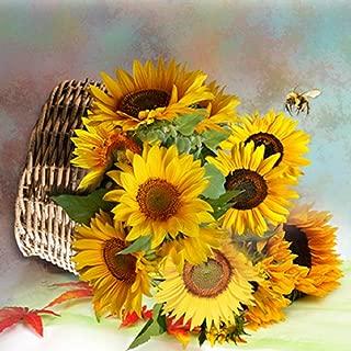 Best diy sunflower canvas Reviews