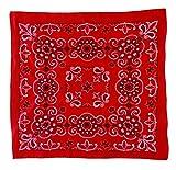 The Bandanna Company Texas Paisley Oversize 27' Bandana (Red)