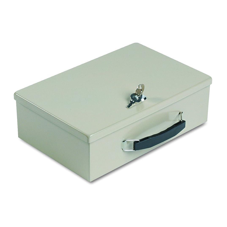 献身不機嫌そうな桃Heavy-Duty Steel Fire-Retardant Security Cash Box, Key Lock, Sand (並行輸入品)