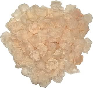 Grace Florist 2000 Pcs Silk Rose Petals Wedding Flower Decoration for Hotel Party Aisle Decor (Champagne)