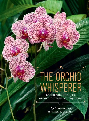 Gardening & Horticulture Orchids