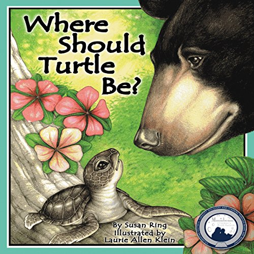 Where Should Turtle Be? copertina