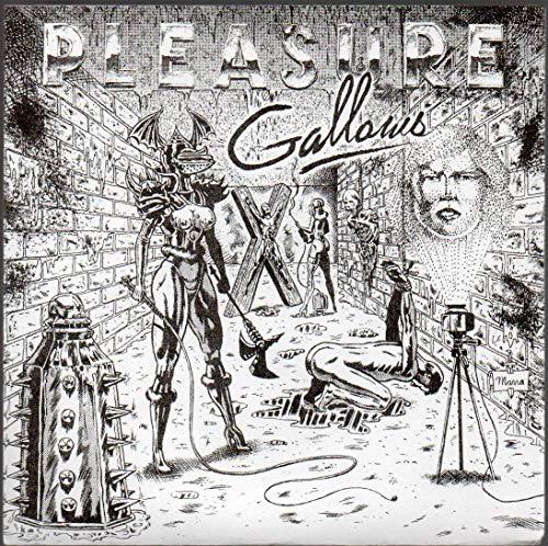 "Pleasure Gallows 45 rpm vinyl 7"" single: ""Positivity"" b/w ""Beer Find"""