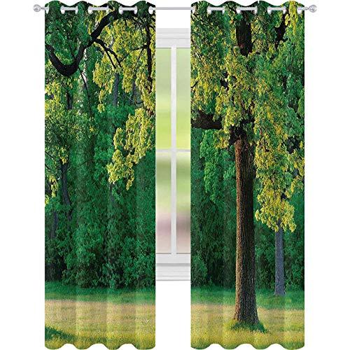 Cortina de aislamiento oscurecida con ojales, hojas jóvenes frescas de roble ramas en el parque, paisaje de la naturaleza tranquila, 52 x 84 para la sala de estar, verde marrón