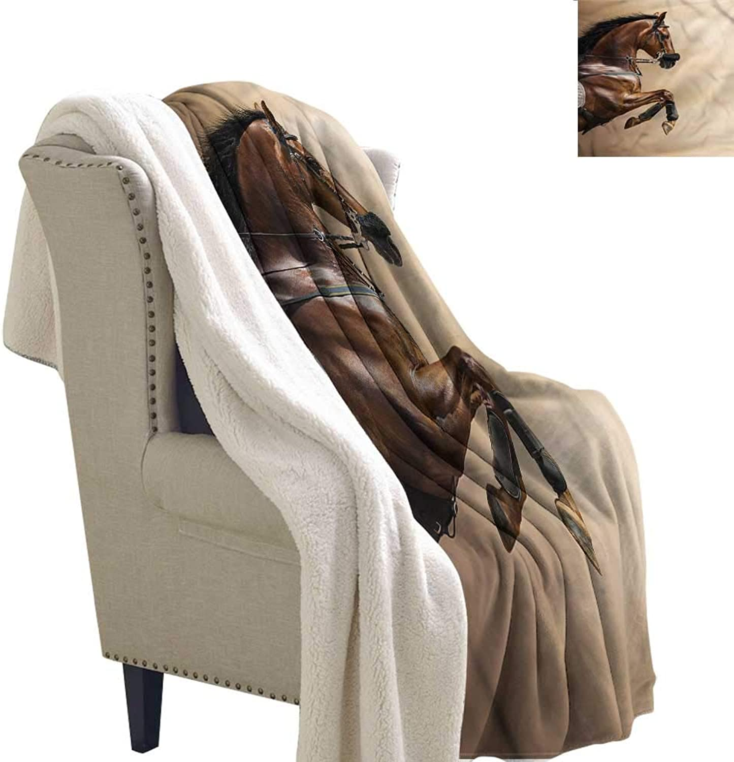 AndyTours Outdoor Blanket Horses Show Animals with a Leash Autumn and Winter Thick Blanket W59 x L31