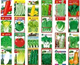 Seeds PACAKGE : Australia Choy Sum China Garden Yard Seed Vegetable Organic Non-GMO