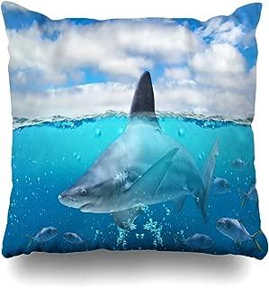 Ahawoso Throw Pillow Cover Square 20x20 Blue Half Underwater Tropical Paradise Big Animals Cuba Wildlife Africa Nature Colorful Aquarium Asia Decorative Zippered Cushion Case Home Decor Pillowcase