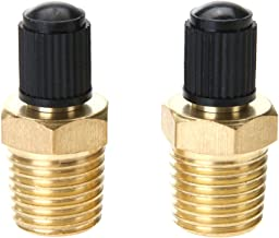 BROADROOT 2pcs 1/4in Brass Tire Tyre Air Compressor Tank Fill Valves for Dunlop Valve