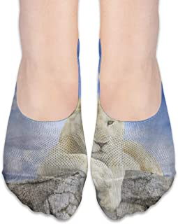 ALPHNJ, Calcetines para mujer White Lion With Blue Sky Low Cut Liner Hidden Flat Boat Calcetines Niñas antideslizantes