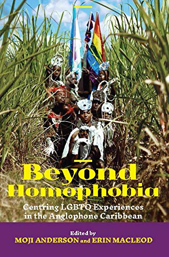 Beyond Homophobia: Centring LGBTQ Experiences in the Anglophone Caribbean (English Edition)