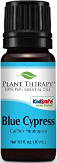 Plant Therapy Blue Cypress Essential Oil 10 mL (1/3 oz) 100% Pure, Undiluted, Therapeutic Grade