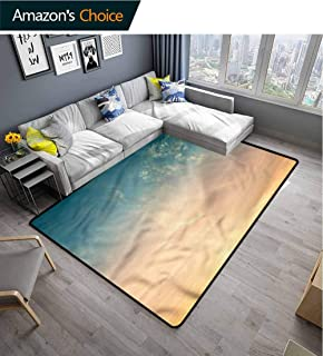TableCoversHome Sky Moiré Kids' Rugs, Horizon Summer Time Photo Pattern Printing Rugs, Durable Carpet Area Rug - Living Dinning Room Bedroom Rugs and Carpets (2.5'x 9')