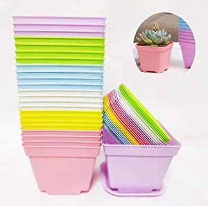 24 Pack 4 Inch Colorful Square Nursery Pot Plastic Plant Pots with Pallet,Plant Seed Starting Transplant Planter Container for Your Room,Garden Office and Balcony Decor (4 Inch-24Pcs)