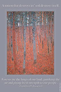 ArtParisienne Forests are The Lungs of Our Land Franklin D. Roosevelt Gustave Klimt 12x18 Poster Semi-Gloss Heavy Stock Paper Print