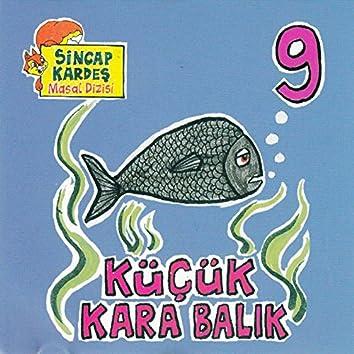 Küçük Kara Balık - Sincap Kardeş Masal Dizisi, Vol. 9