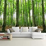 RTYUIHN Carta da parati 3D carta da parati foresta paesaggio naturale boschi scenario camera da letto soggiorno decorazione carta da parati moderna decorazione di arte della parete