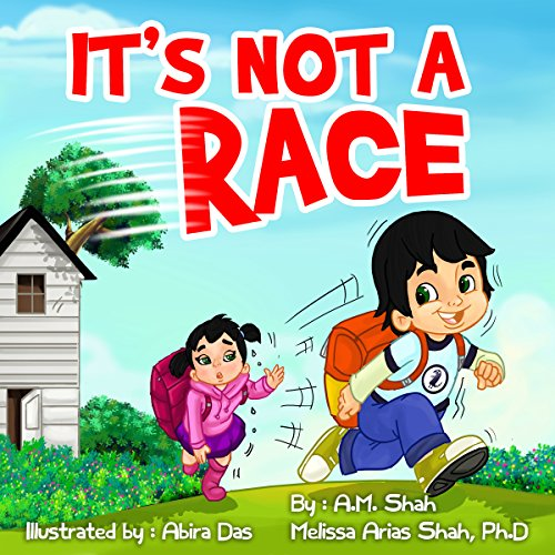 It's Not a Race audiobook cover art