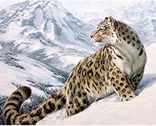 DIY Oil Painting, Digital Paint by Number Kits for Kids, Students, Adults Beginner,Home Living Room Office Decorations Gifts - Snow Leopard- Without Framed