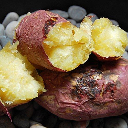 紅はるか 熊本県産 甘くて美味しい 紅蜜芋 2kg 安納芋に匹敵 芋 いも イモ さつまいも