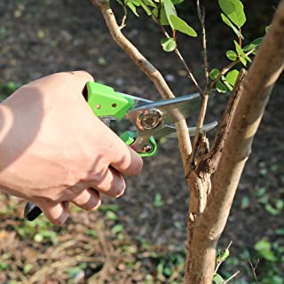 Tesinll Hand Pruners 3 Blade Edge,Hardness HRC58,Electroplating Surface Pruning Shears Green Color Garden Scissors Fit for Shrubs Pruning, Branch Pruning