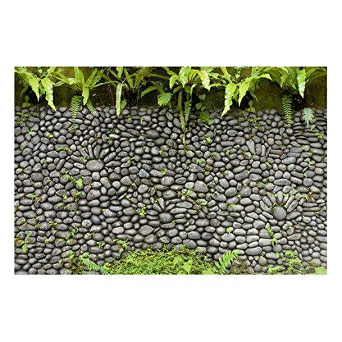 Bilderwelten Pizarra magnética - Stone Wall With Plants - Formato apaisado 2:3 magnéticas decoracion murales mensajes impreso metálica pizarra imantada pizarra para cocina oficina, Tamaño: 60cm x 90cm