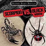 Scorpion vs. Black Widow (Bizarre Beast Battles)
