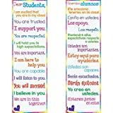Really Good Stuff Dear Students Two-Sided Banner - English/Spanish...