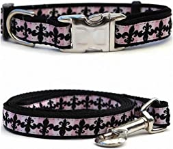 "product image for Diva-Dog 'Katrina' Custom Small Dog 5/8"" Wide Dog Collar with Plain or Engraved Buckle, Matching Leash Available - Teacup, XS/S"