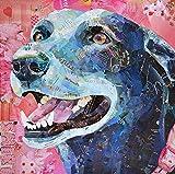 Pintura por Números,Pintura al óleo perro animal,DIY Pintura al óleo Colorido Pintar Kit de,Lienzo Preimpreso de con Pinceles y Pigmento Acrílico (16 X 20 Pulgadas,Sin Marco)