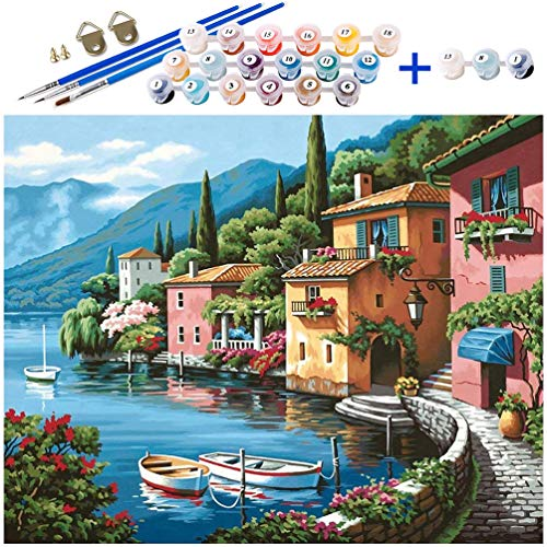 Paint by numbers, DIY Acrylic Paint Kit, Canvas Oil Painting with Paint...