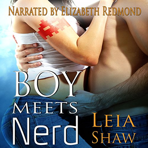 Boy Meets Nerd audiobook cover art