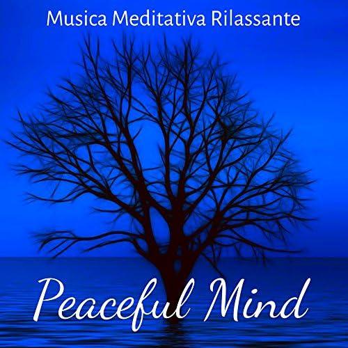 Effetti Sonori Specialisti & Pura Meditazione Zen & 101 Musica Piano Artisti