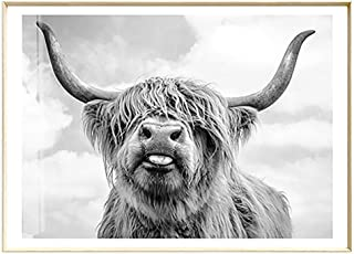 Artliving Cute Highland Cow Sticking Tongue Out Art Print Poster for Home Decor Wall Decor Unframed (60x90 cm)