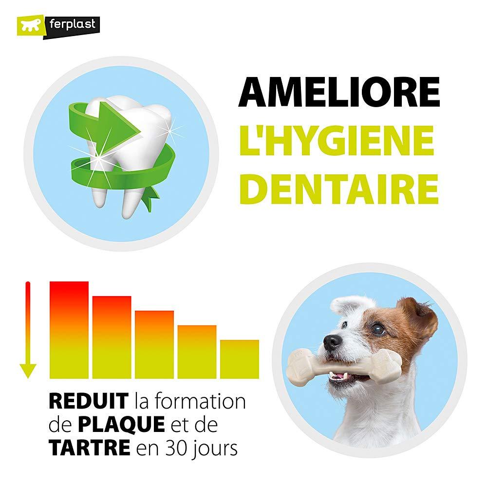 Company Of Animals Marrowbone Os /à M/âcher pour Chien Taille L