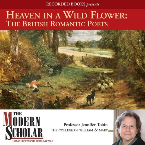 Heaven in a Wild Flower audiobook cover art