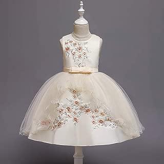 Luxury Girls Princess Dress Embroidered Beaded Evening Dresses Children Bow Dress Costume Princess Skirt Gauze Sleeveless Dress ryq (Color : Champagne, Size : 130cm)