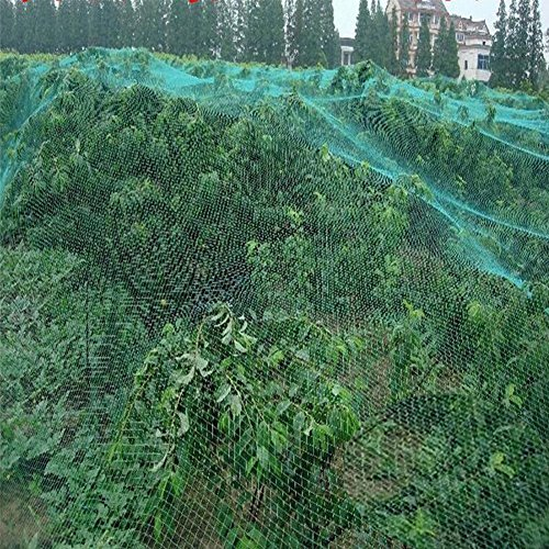 GOTOTOP 1pc/2pc/4pcs Filet de Protection Jardin Anti-Oiseaux pour Jardin, Arbres Fruitiers, Légumes et Plantes, Bassin d'eau - 4m x 10m (4pcs)