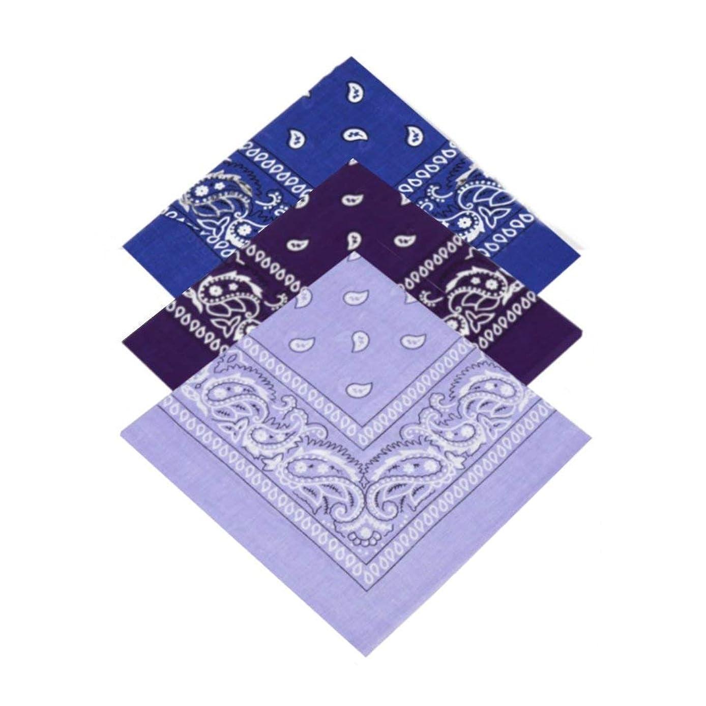 GTHYUUI Pack of 3 X Paisley Bandana Headbands for Women, Girls,Men & Boys 100% Cotton Bandana Headscarf/Neck Scarf/Neckerchief / Handkerchief/Head Tie (Royal Blue,Purple,Lilac)