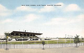mile high kennel club