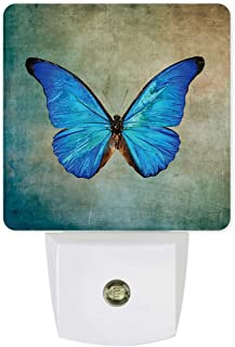 Plug-in Night Lights Vintage Spring Blue Butterfly Flying LED Night Lamp with Auto Dusk-to-Dawn Sensor Warm White Light& Ultra Low Power for Bedroom/Bathroom/Hallway/Kid's Room