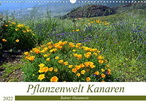 Pflanzenwelt Kanaren (Wandkalender 2022 DIN A3 quer)