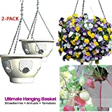 Ultimate Hanging Baskets - Strawberry, Tomato, Flower, and Herb Outdoor Planters - Use Garden Pots For Growing Plants Outside On A Deck, Fence, or Balcony (2, Stone)